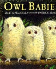 Owl_Babies__Big__5092bb929d171.jpg